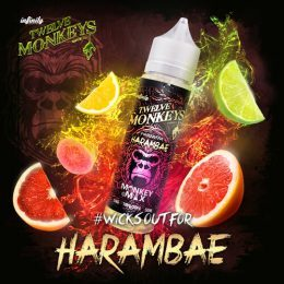 E-liquide Harambae 50ml - Twelve Monkeys